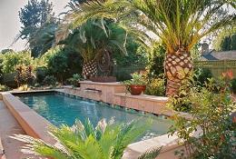 6 kiểu mái che loại bỏ ánh nắng gây gắt làm mát hồ bơi nhà bạn